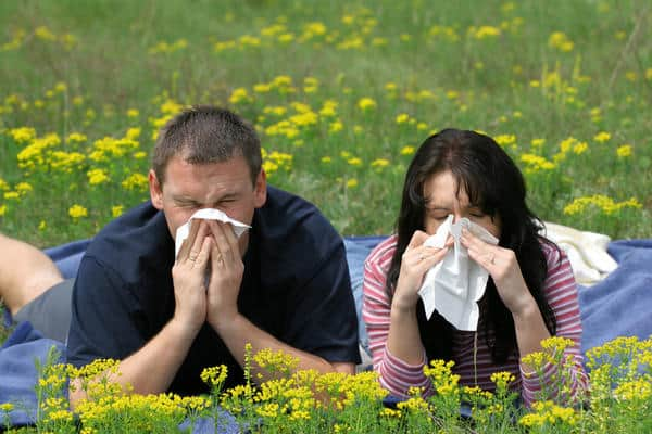 Sneezing cause of environment - NAET Dubai