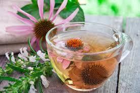 Echinacea Tea NAET Dubai