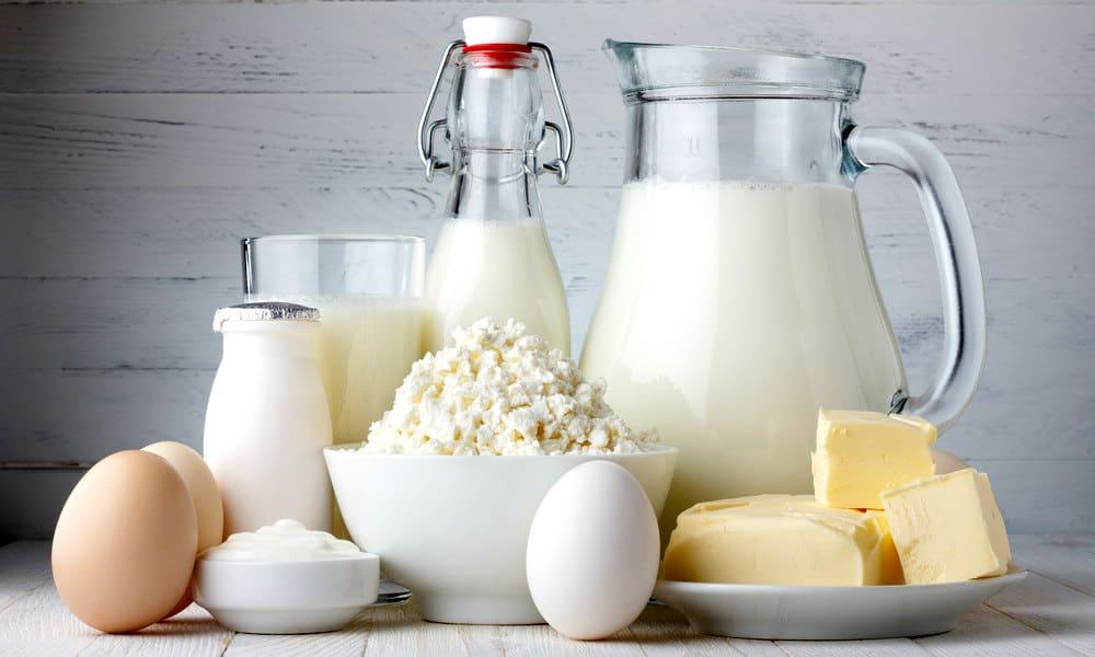 All kinds of dairy - NAET Dubai