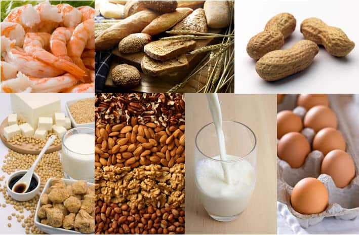 Foods rich in proteins - NAET Dubai