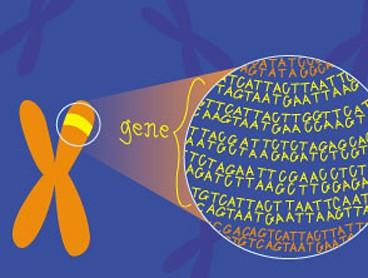 genetics_naetdubai