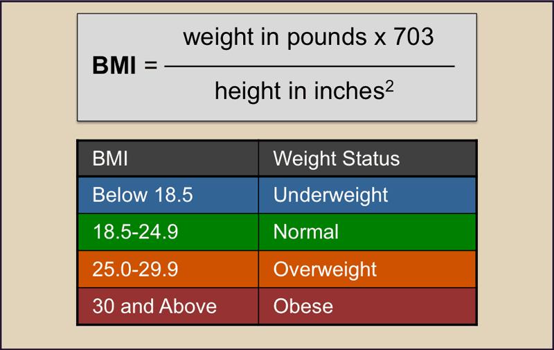 BMI Calculations NAET Dubai