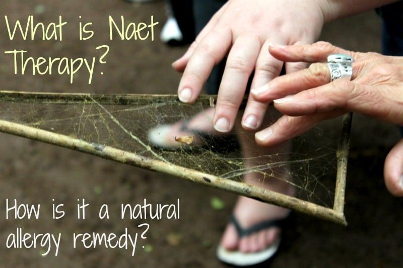NEAT treatment NAET Dubai