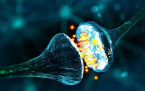 PANDAS - Hormonal Imbalance Cure Neurotransmitters