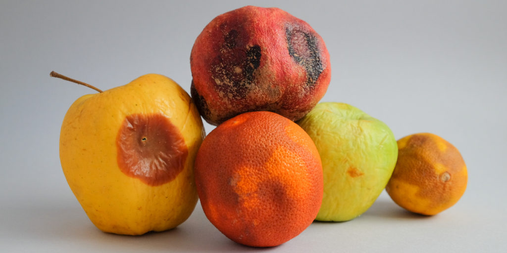 Mycotoxins in fruits